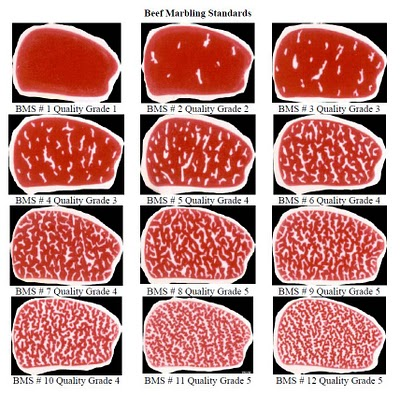 Beef cuts poster 228052003756185956 as well Domestic Beef Market Sales Value Continues To Rise While Volume Slide Continues besides Flecks Specks Streaks And Ribbons The Key To A Well Marbled Steak further Goat in addition How Cook Perfect Steak. on beef cuts chart